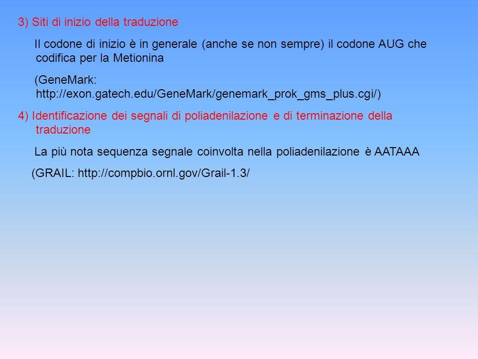 3) Siti di inizio della traduzione