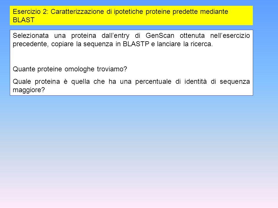 Esercizio 2: Caratterizzazione di ipotetiche proteine predette mediante BLAST
