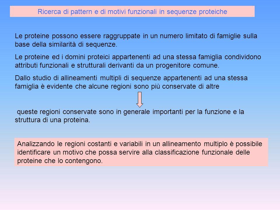 Ricerca di pattern e di motivi funzionali in sequenze proteiche
