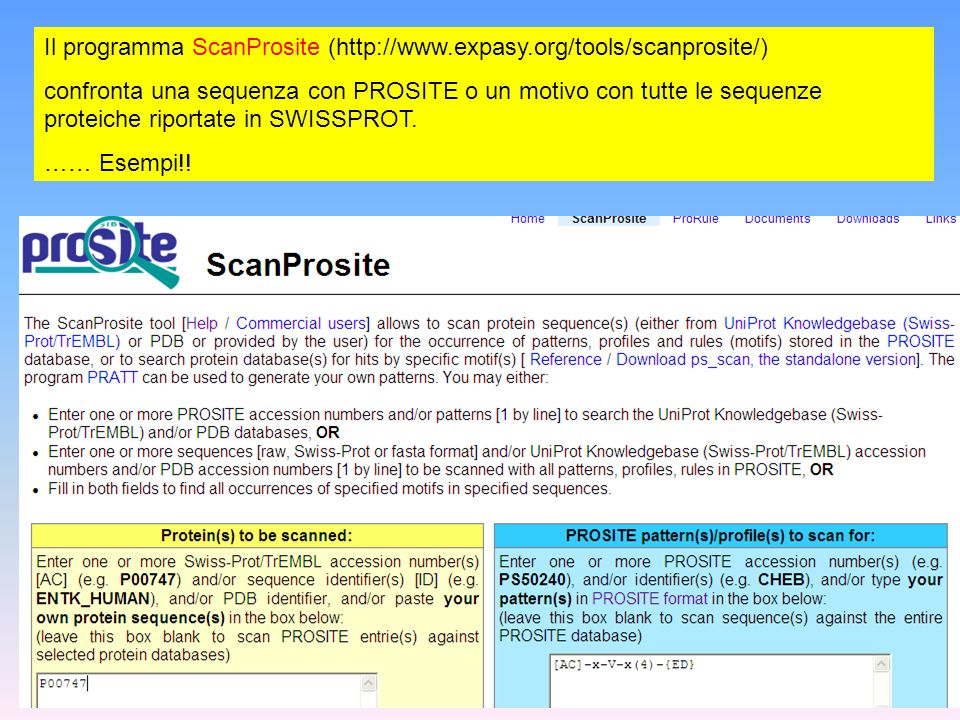 Il programma ScanProsite (http://www.expasy.org/tools/scanprosite/)