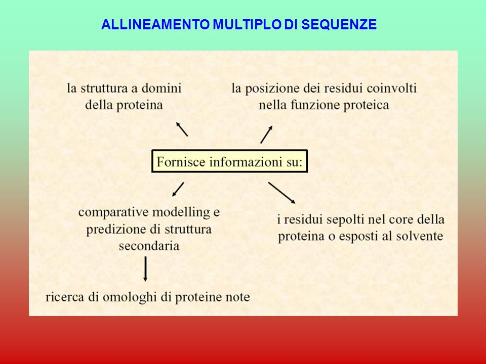 ALLINEAMENTO MULTIPLO DI SEQUENZE