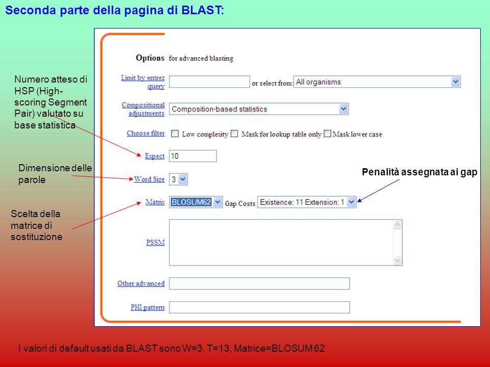 Seconda parte della pagina di BLAST: