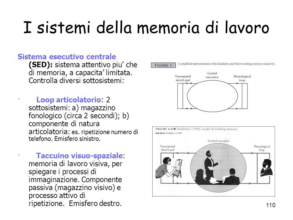 I sistemi della memoria di lavoro