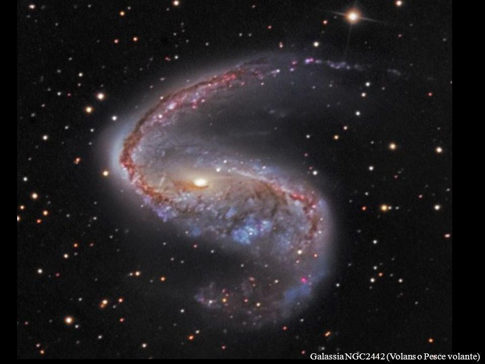 Galassia NGC2442 (Volans o Pesce volante)