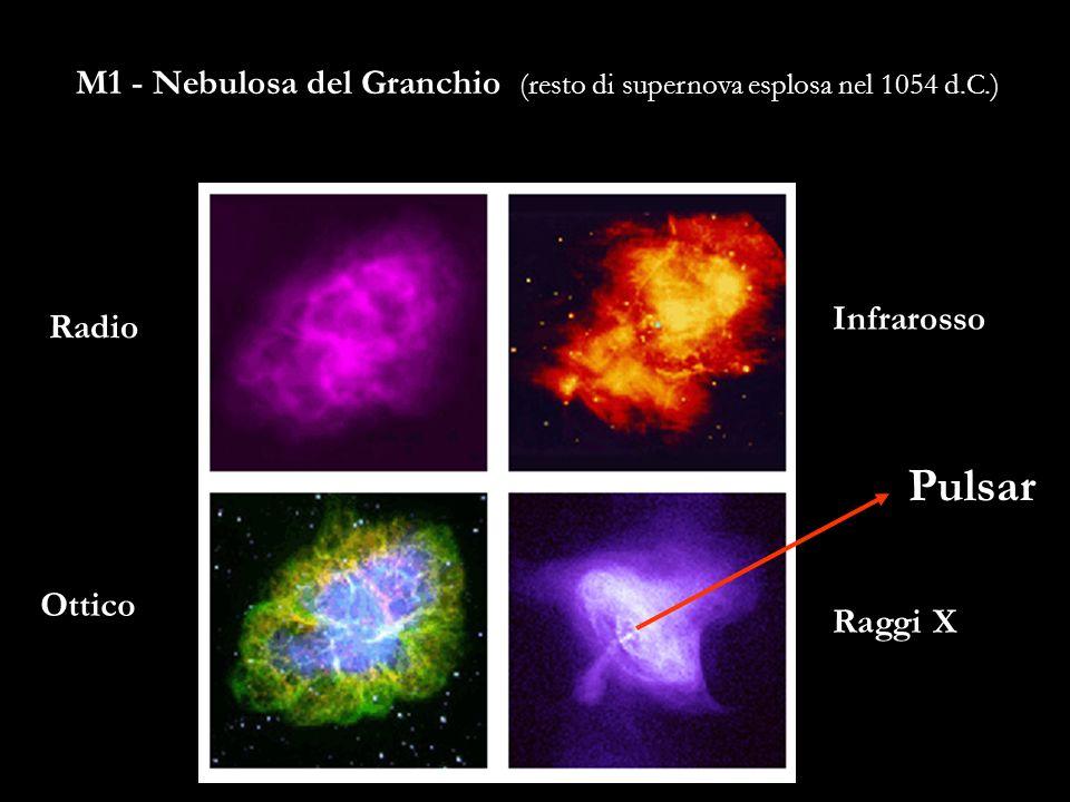M1 - Nebulosa del Granchio (resto di supernova esplosa nel 1054 d.C.)