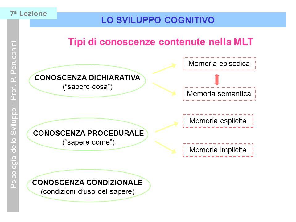 Tipi di conoscenze contenute nella MLT