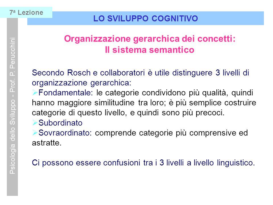 Organizzazione gerarchica dei concetti: