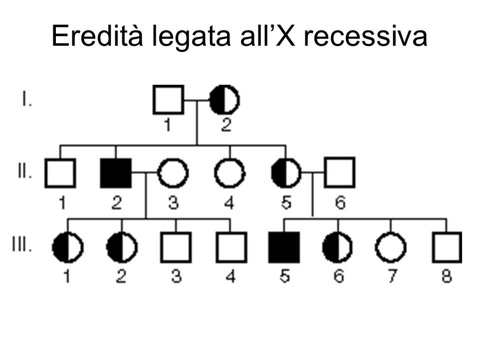 Eredità legata all'X recessiva