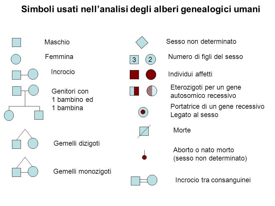 Simboli usati nell'analisi degli alberi genealogici umani