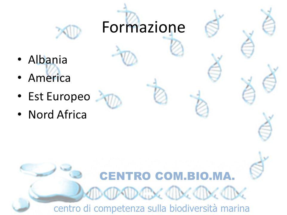 Formazione Albania America Est Europeo Nord Africa CENTRO COM.BIO.MA.