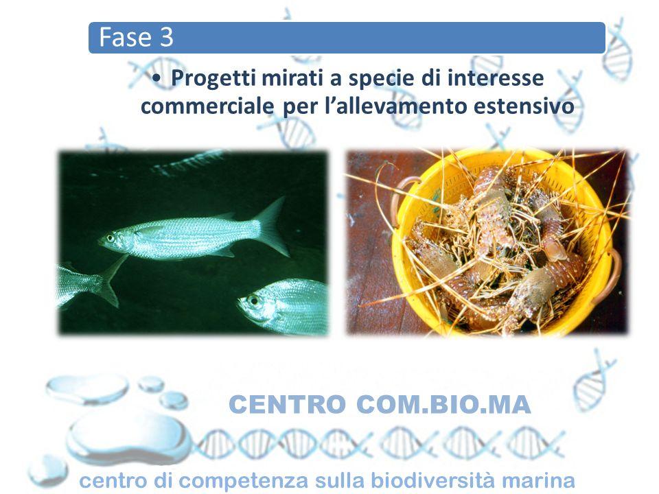 Fase 3 Progetti mirati a specie di interesse commerciale per l'allevamento estensivo. CENTRO COM.BIO.MA.