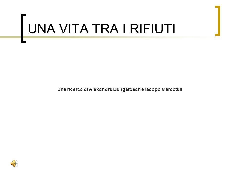 Una ricerca di Alexandru Bungardean e Iacopo Marcotuli