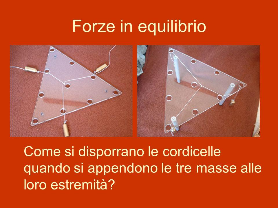 Forze in equilibrio Come si disporrano le cordicelle quando si appendono le tre masse alle loro estremità
