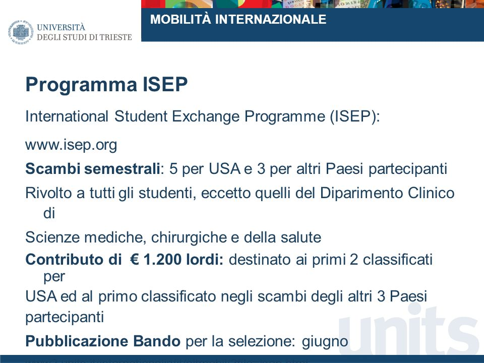 Programma ISEP International Student Exchange Programme (ISEP):