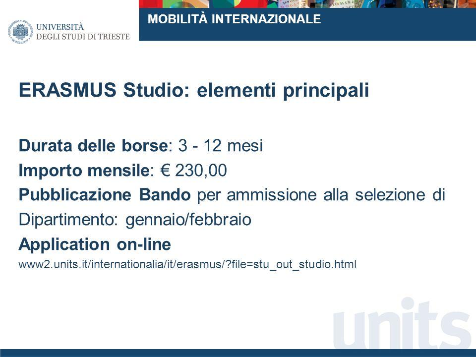 ERASMUS Studio: elementi principali