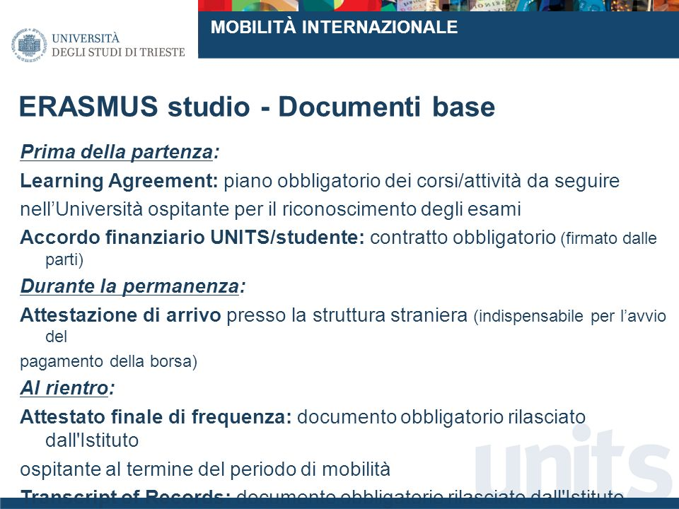 ERASMUS studio - Documenti base