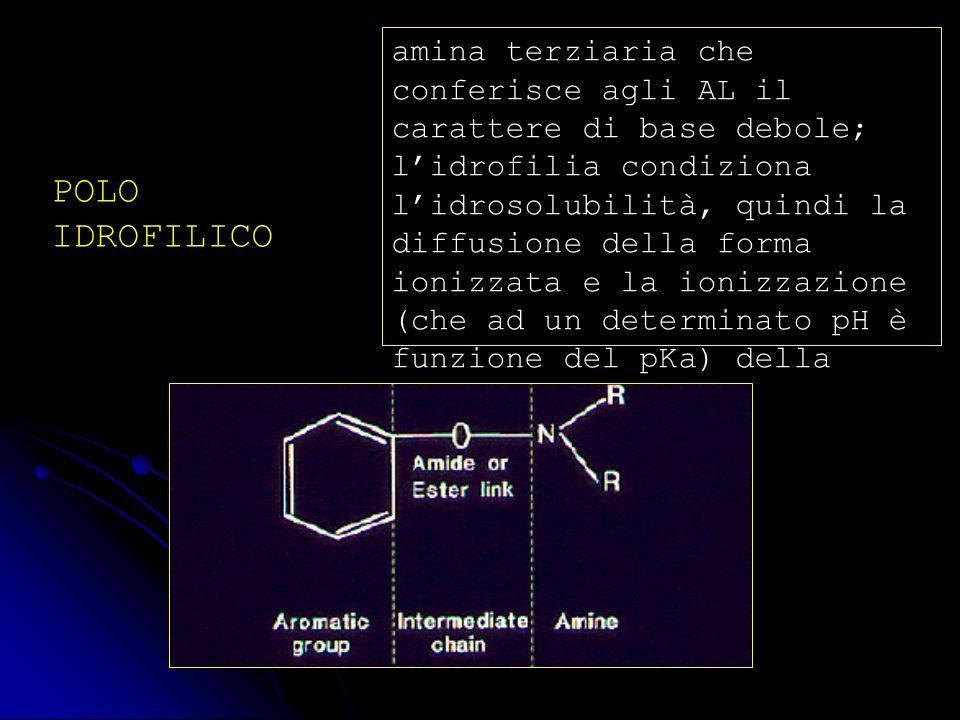 amina terziaria che conferisce agli AL il carattere di base debole; l'idrofilia condiziona l'idrosolubilità, quindi la diffusione della forma ionizzata e la ionizzazione (che ad un determinato pH è funzione del pKa) della molecola di AL;