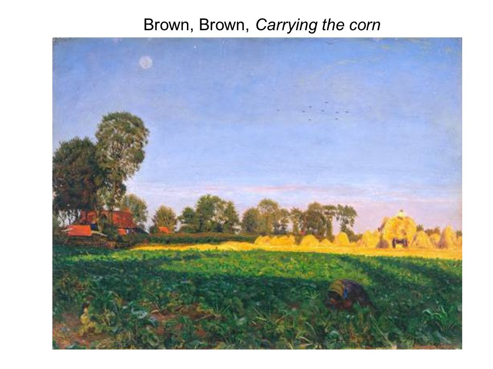 Brown, Brown, Carrying the corn
