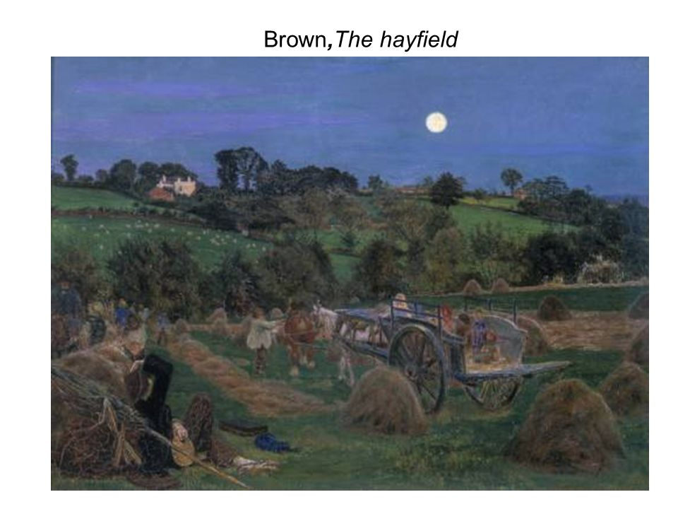 Brown,The hayfield
