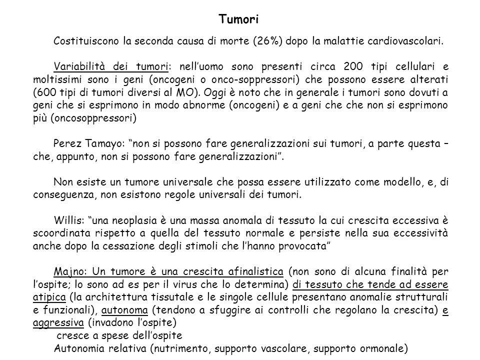 Tumori Costituiscono la seconda causa di morte (26%) dopo la malattie cardiovascolari.