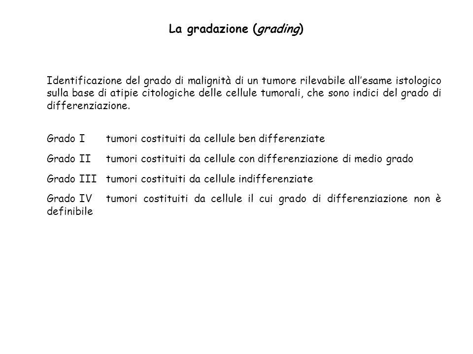 La gradazione (grading)
