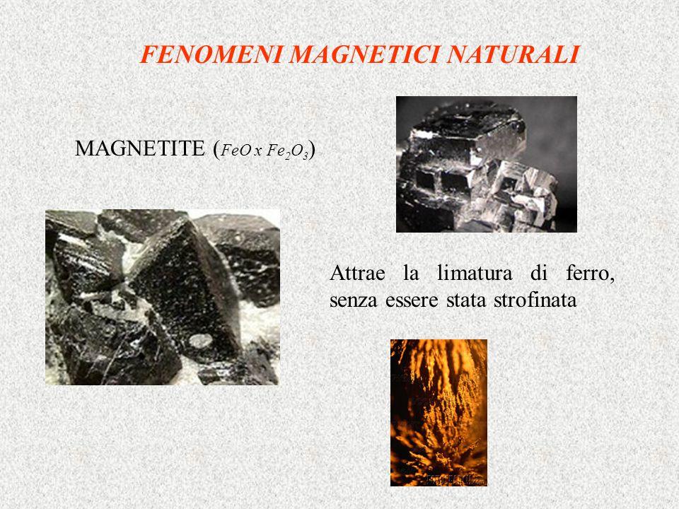 FENOMENI MAGNETICI NATURALI