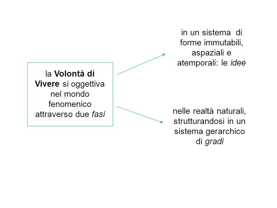 in un sistema di forme immutabili, aspaziali e atemporali: le idee