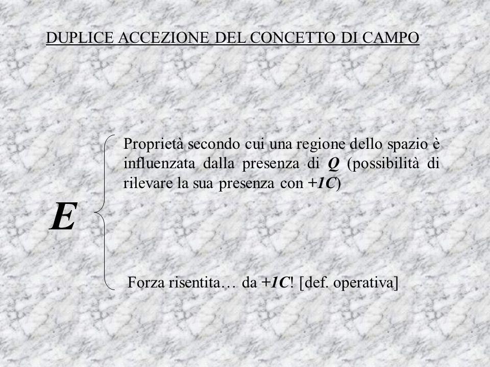 E DUPLICE ACCEZIONE DEL CONCETTO DI CAMPO
