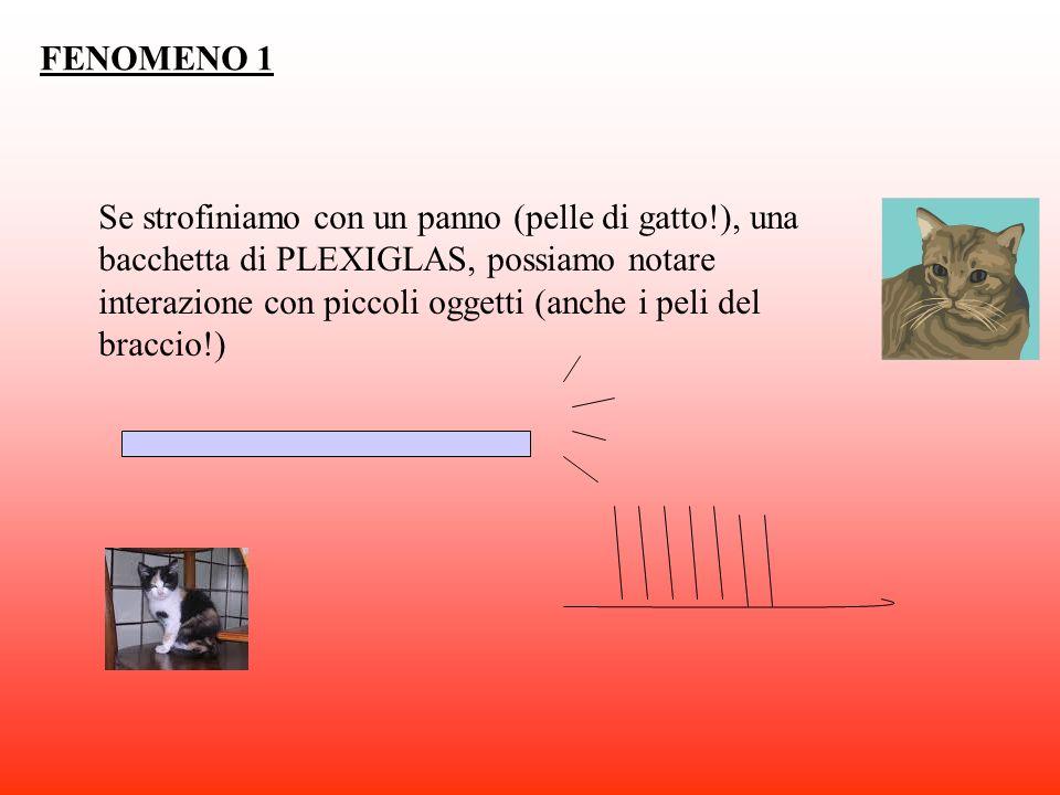 FENOMENO 1