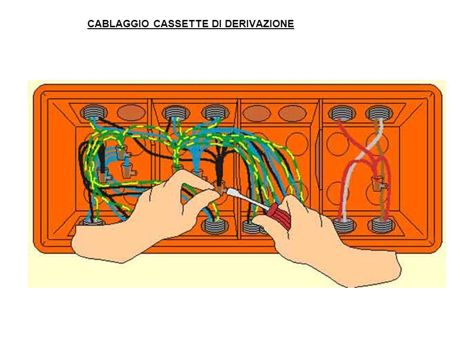 CABLAGGIO CASSETTE DI DERIVAZIONE