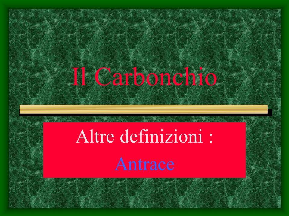 Altre definizioni : Antrace
