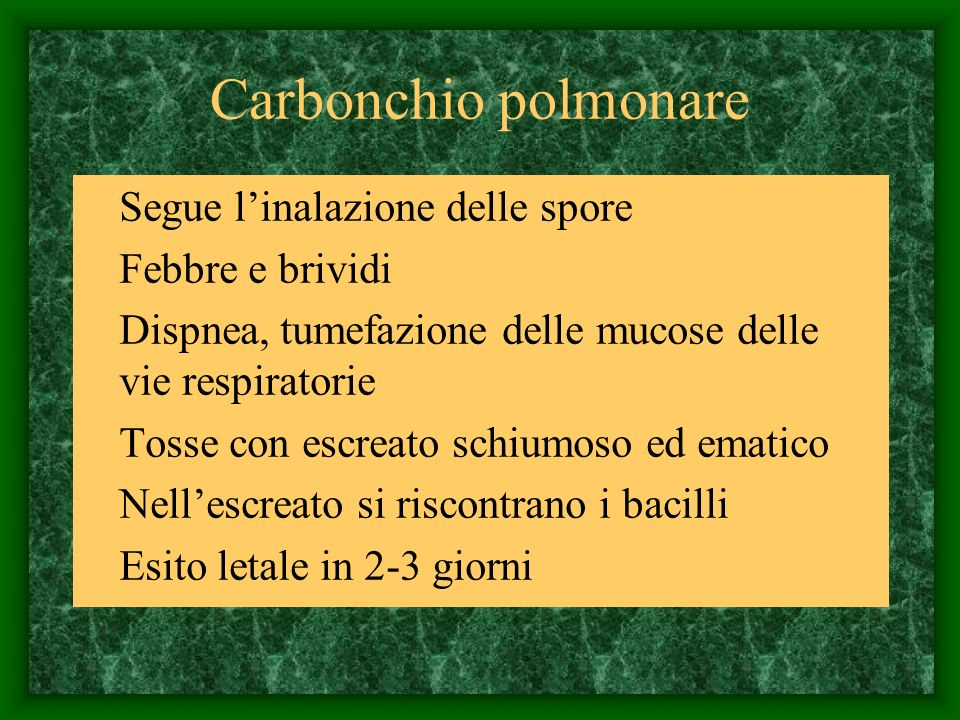 Carbonchio polmonare Segue l'inalazione delle spore Febbre e brividi