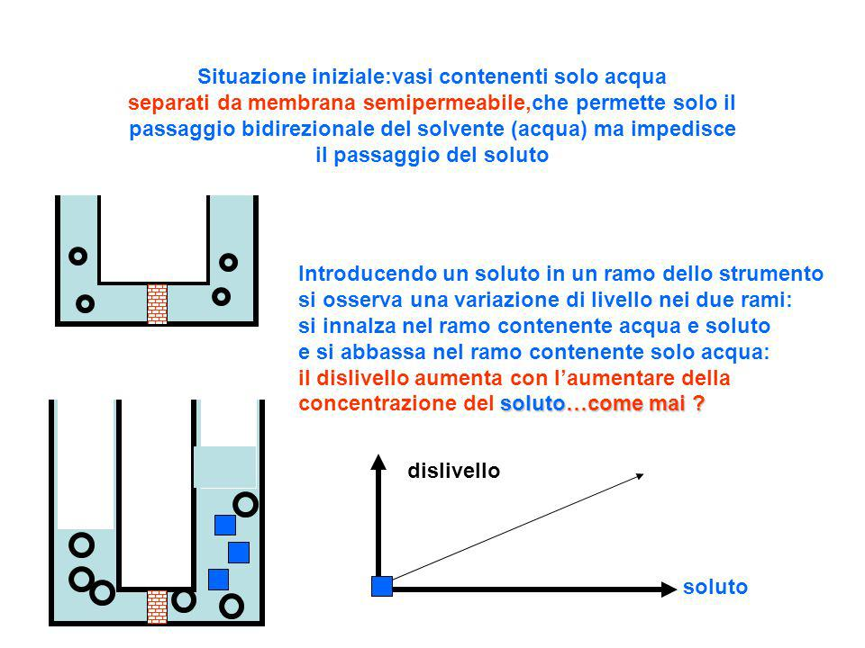 Situazione iniziale:vasi contenenti solo acqua separati da membrana semipermeabile,che permette solo il passaggio bidirezionale del solvente (acqua) ma impedisce il passaggio del soluto