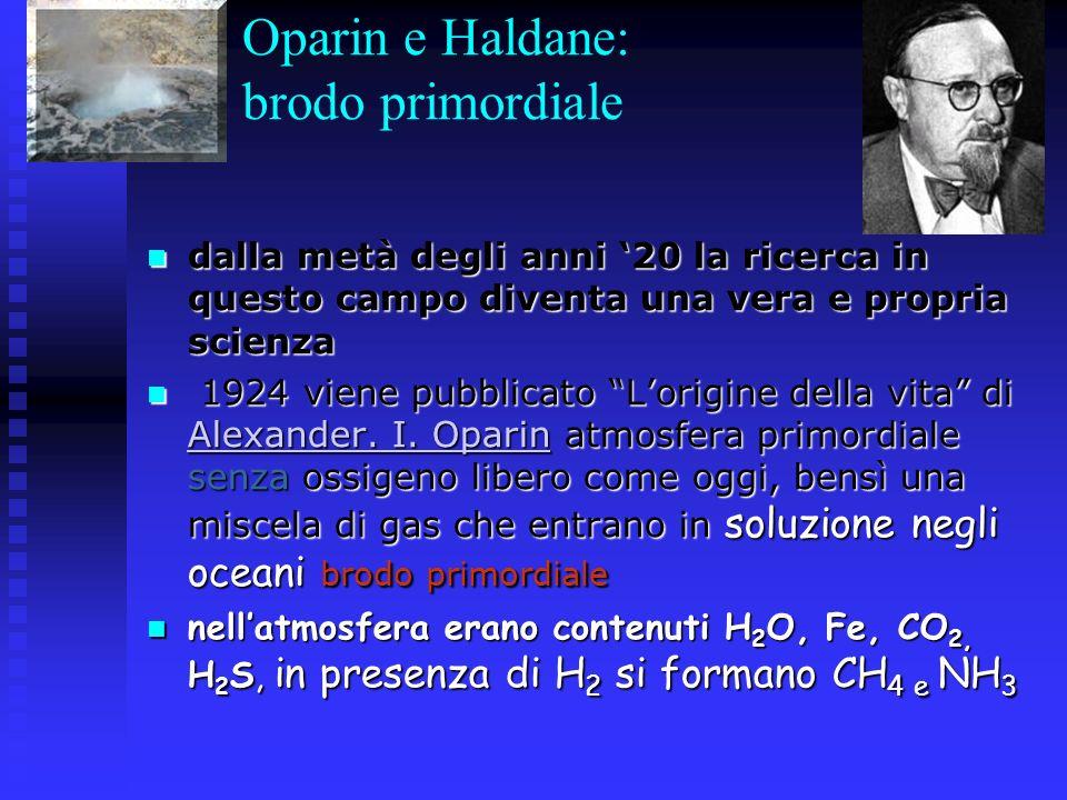 Oparin e Haldane: brodo primordiale