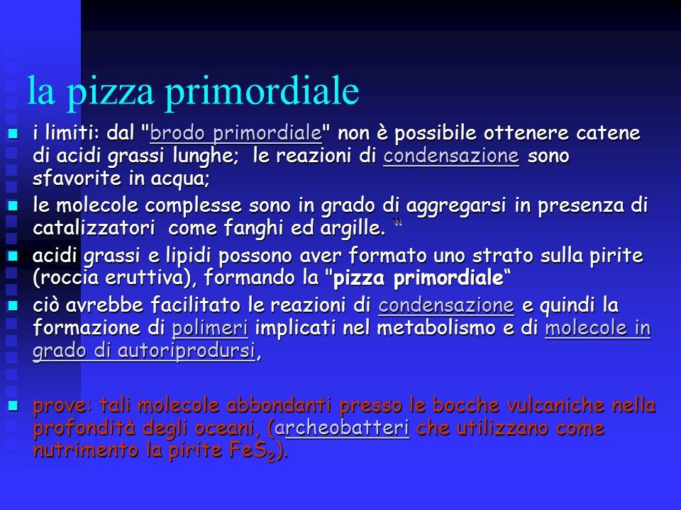 la pizza primordiale