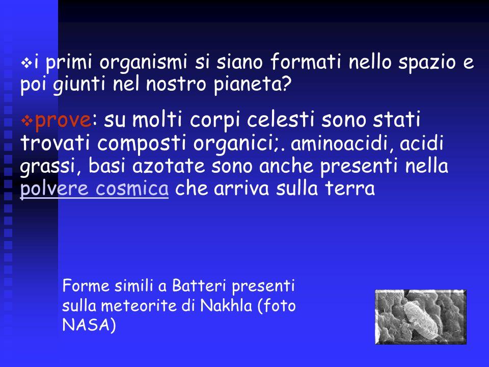 i primi organismi si siano formati nello spazio e poi giunti nel nostro pianeta