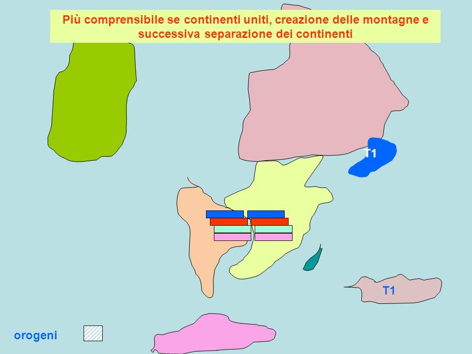 Più comprensibile se continenti uniti, creazione delle montagne e successiva separazione dei continenti
