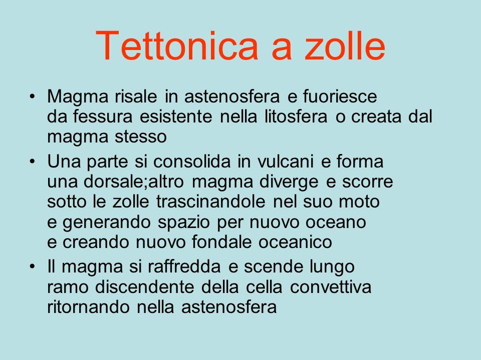 Tettonica a zolle Magma risale in astenosfera e fuoriesce da fessura esistente nella litosfera o creata dal magma stesso.