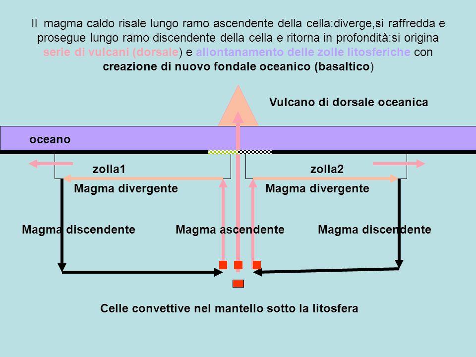 Il magma caldo risale lungo ramo ascendente della cella:diverge,si raffredda e prosegue lungo ramo discendente della cella e ritorna in profondità:si origina serie di vulcani (dorsale) e allontanamento delle zolle litosferiche con creazione di nuovo fondale oceanico (basaltico)