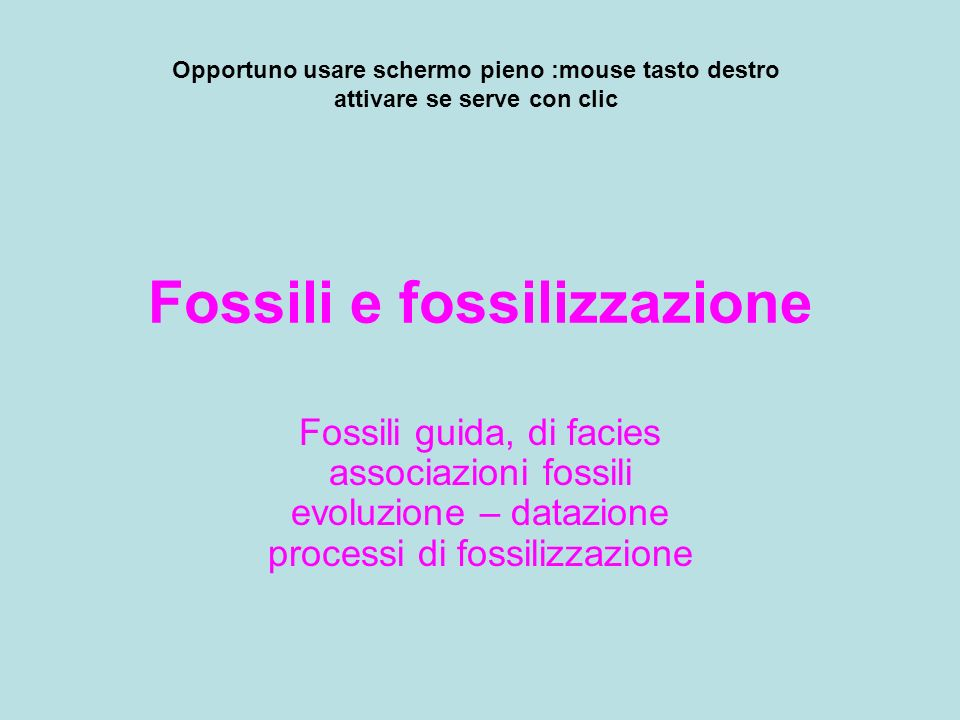 Fossili e fossilizzazione