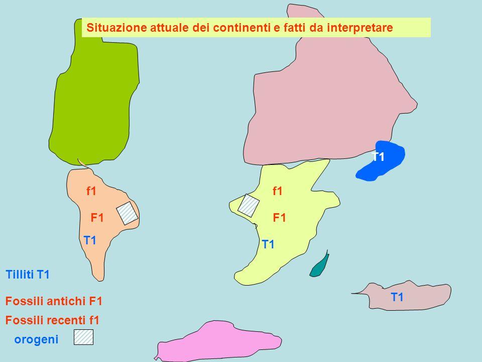 Situazione attuale dei continenti e fatti da interpretare
