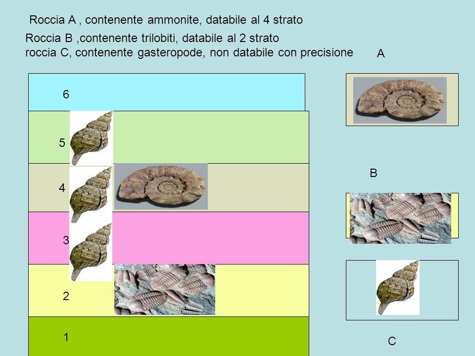 Roccia A , contenente ammonite, databile al 4 strato