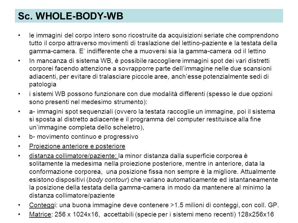Sc. WHOLE-BODY-WB