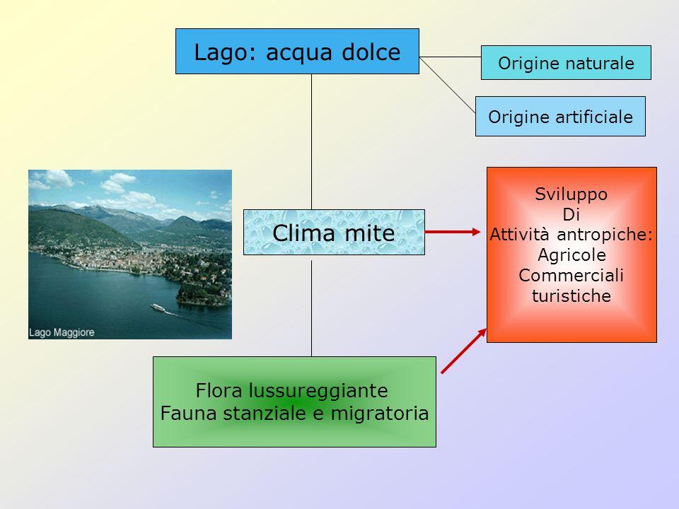 Fauna stanziale e migratoria