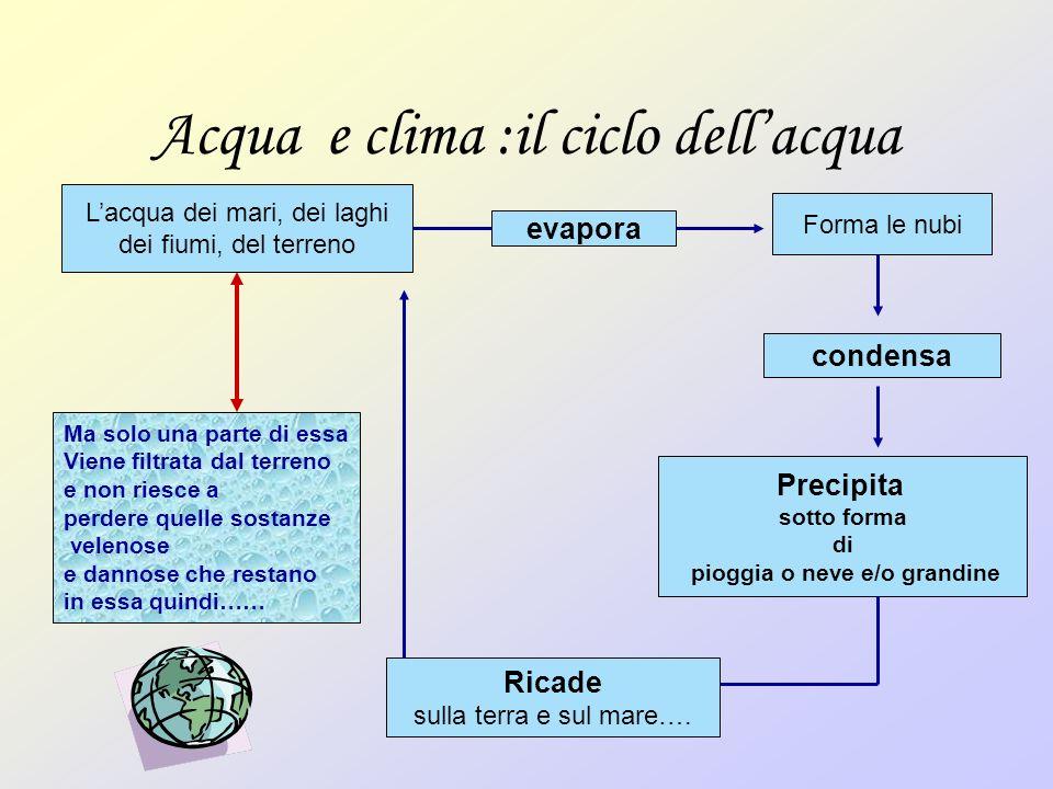 Acqua e clima :il ciclo dell'acqua
