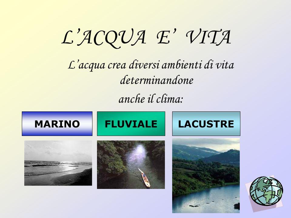 L'acqua crea diversi ambienti di vita determinandone