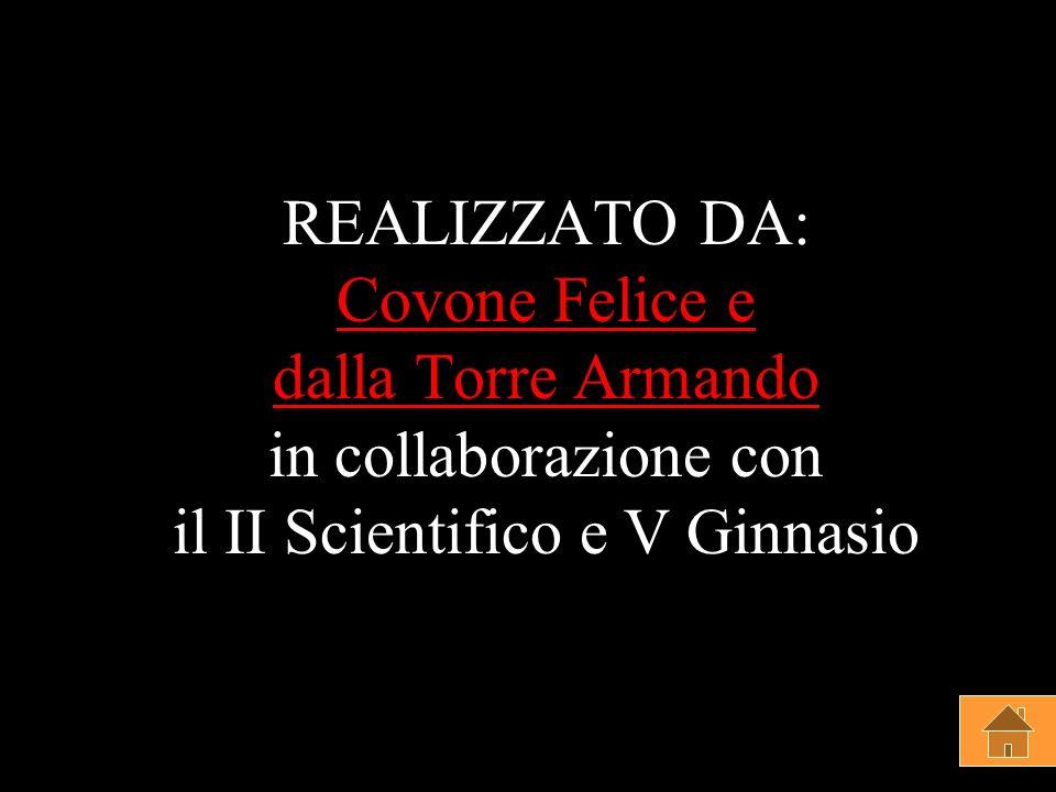REALIZZATO DA: Covone Felice e dalla Torre Armando in collaborazione con il II Scientifico e V Ginnasio