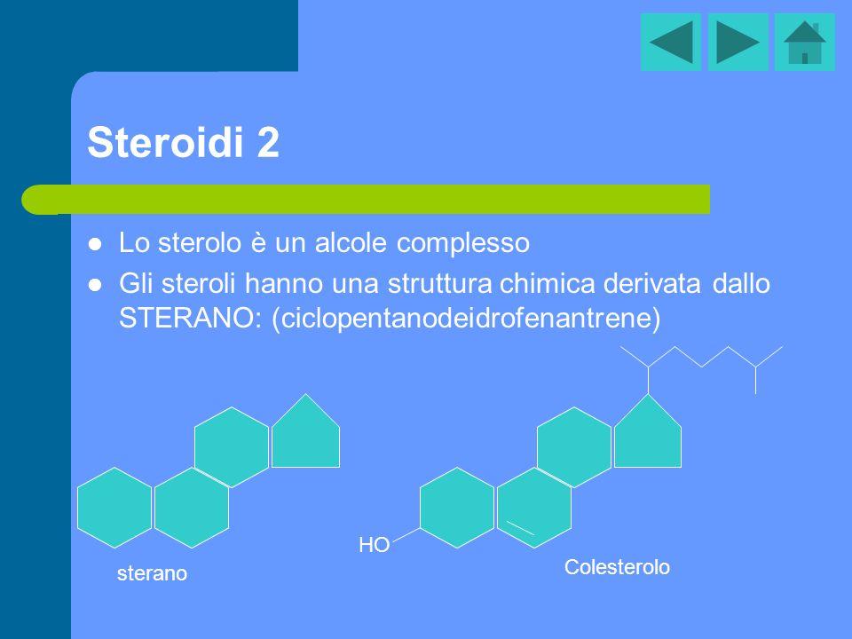 Steroidi 2 Lo sterolo è un alcole complesso