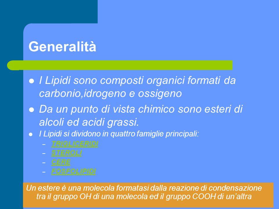 Generalità I Lipidi sono composti organici formati da carbonio,idrogeno e ossigeno.