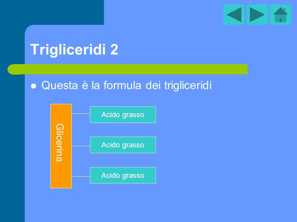 Trigliceridi 2 Questa è la formula dei trigliceridi Glicerina